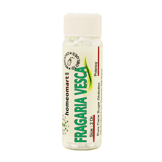 Fragaria Vesca Homeopathy 2 Dram Pellets 6C, 30C, 200C, 1M, 10M