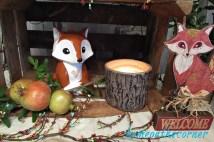 bridal shower woodland foxes