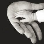 ホメオパシー学校「癒しの手をつくる」