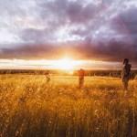 「農家で育つとアレルギーにならない:清潔を求めた現代人が失ったもの」を読んで。。