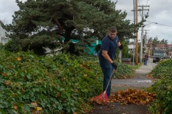 OAK HARBOR, Wash. (Oct. 29, 2015) - Naval Aircrewman (Operator) 1st Class Devin Ellis, assigned to Patrol and Reconnaissance Wing 10 (CPRW-10), from Vancouver, Washington, rakes leaves during a First Class Petty Officer Association (FCPOA) community relations (COMREL) event at Windjammer Park. The FCPOA volunteers monthly around Whidbey Island as part of their COMREL program. (U.S. Navy photo by Mass Communication Specialist 3rd Class Caleb Cooper/Released)