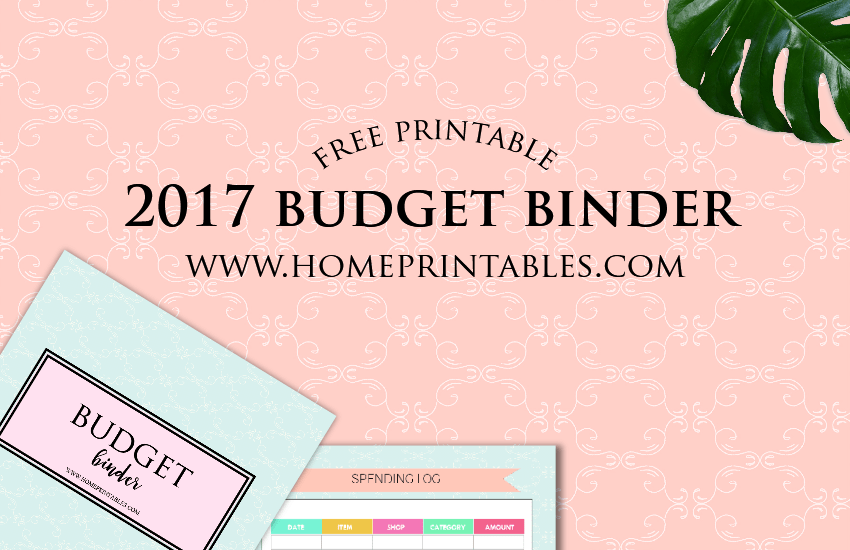 2017 Budget Binder Printable: Pretty and FREE!