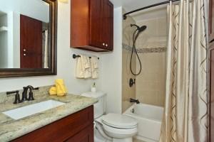 Westview second bathroom