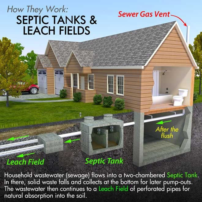 Septic Tank and Leach Field Infographic