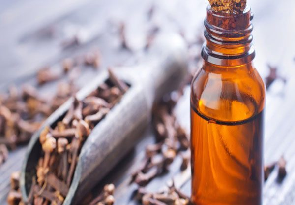 Clove Oil uses of mouth Canker Sores remedy overnight