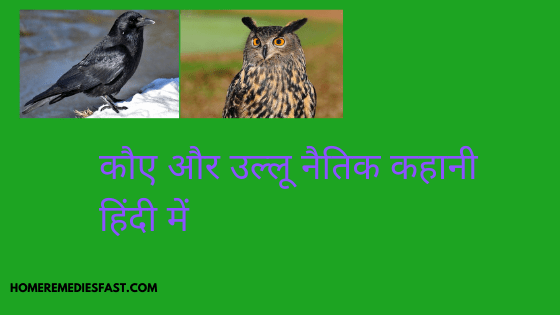 crow and owl moral story in hindi