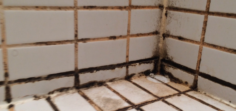 http homerenodeals ca tag cost to regrout tile shower