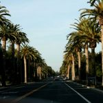 Top Ten Things That Make Palo Alto Great!