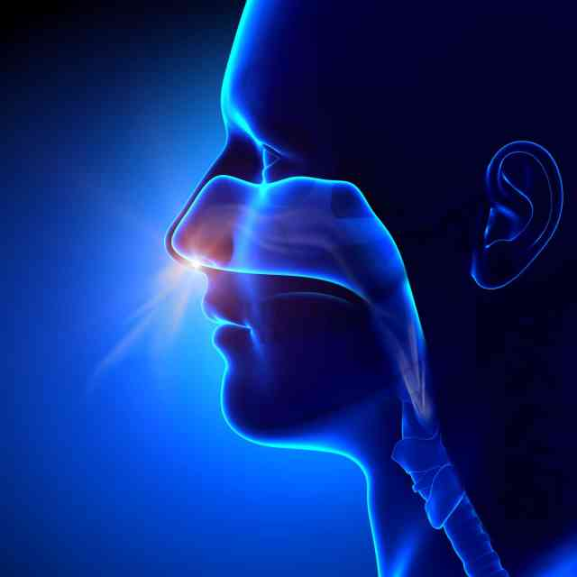 Why Is It Better to Breathe Through Your Nose?
