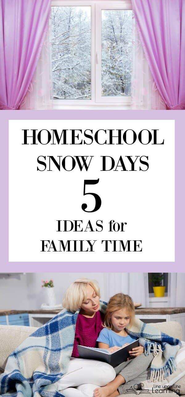 For our family in our homeschool a dreary weather day turns in to a homeschool snow day! That means it's family activity time.