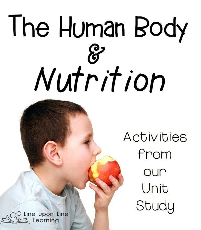 Human Body and Nutrition Activities