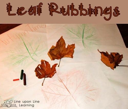 201511 leaf rubbing