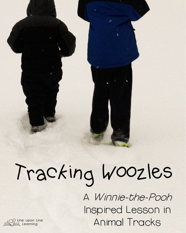Tracking Woozles, a Winnie-the-Pooh inspired lesson in animal tracks on Line upon Line Learning blog
