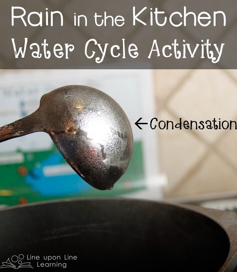 We watched steam condense on a cold spoon in our kitchen water cycle activity.