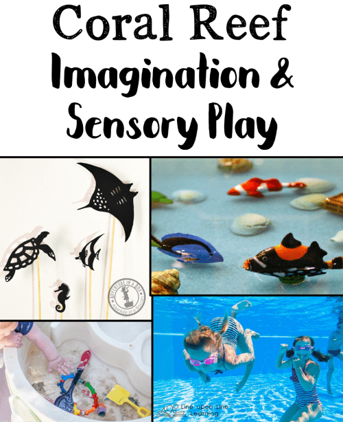 You may be amazed at how much kids learn with hands-on coral reef imagination and sensory play resources.