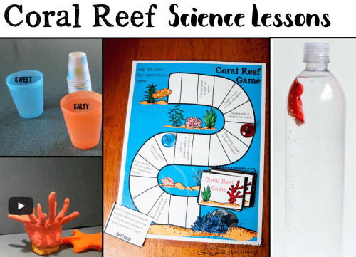 Incorporate these hands-on coral reef activities into your next science lessons!