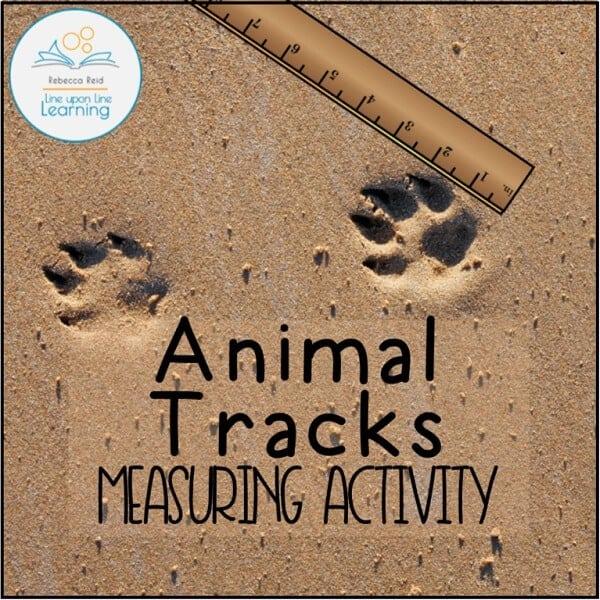 animal tracks measuring COVER