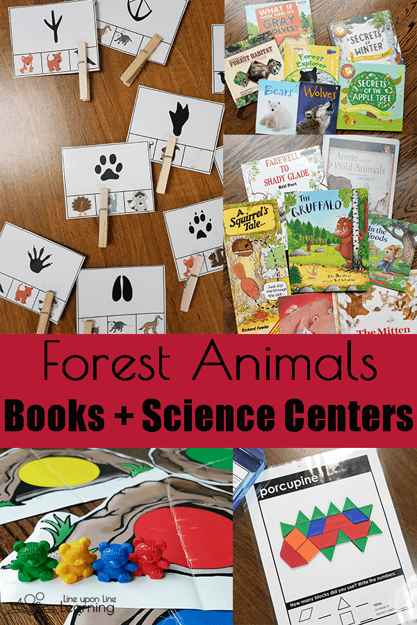 Woodland Animals and Temperate Forests Habitats Unit Study