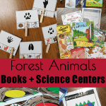 Learn about the animals of the forest with a woodland animals themed unit! Great fiction and nonfiction books, forest animals pattern mats, and track identification clip cards make it fun as well as educational.