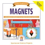 Science fair project ideas about magnets.