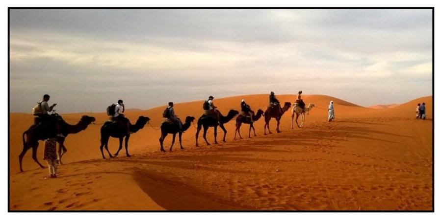 Photo of a desert-a camel caravan .