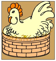 hen-sitting-eggs-basket