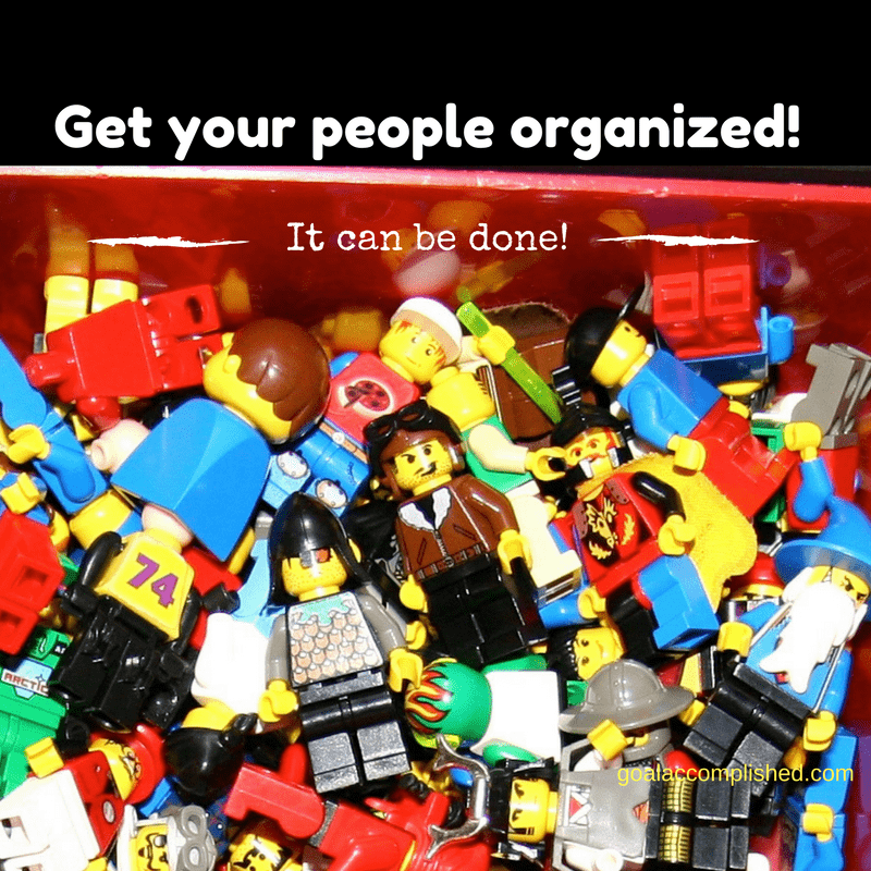 "various LEGO people in a bin ""Get Your People Organized!"""