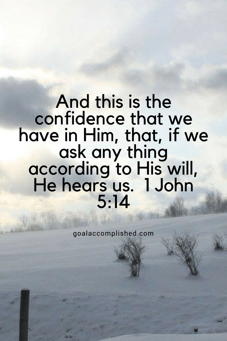 And this is the confidence that we have in Him, that, if we ask any thing according to His will, He hears us. I John 5:14 Text over snow covered field