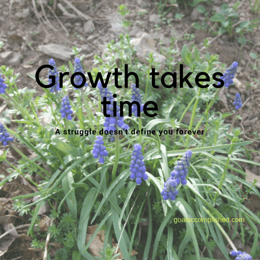Christian Growth takes time: A struggle doesn't define you forever text over grape hyacinths blooming in Spring