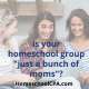 """Is your homeschool group """"just a bunch of moms""""?"""