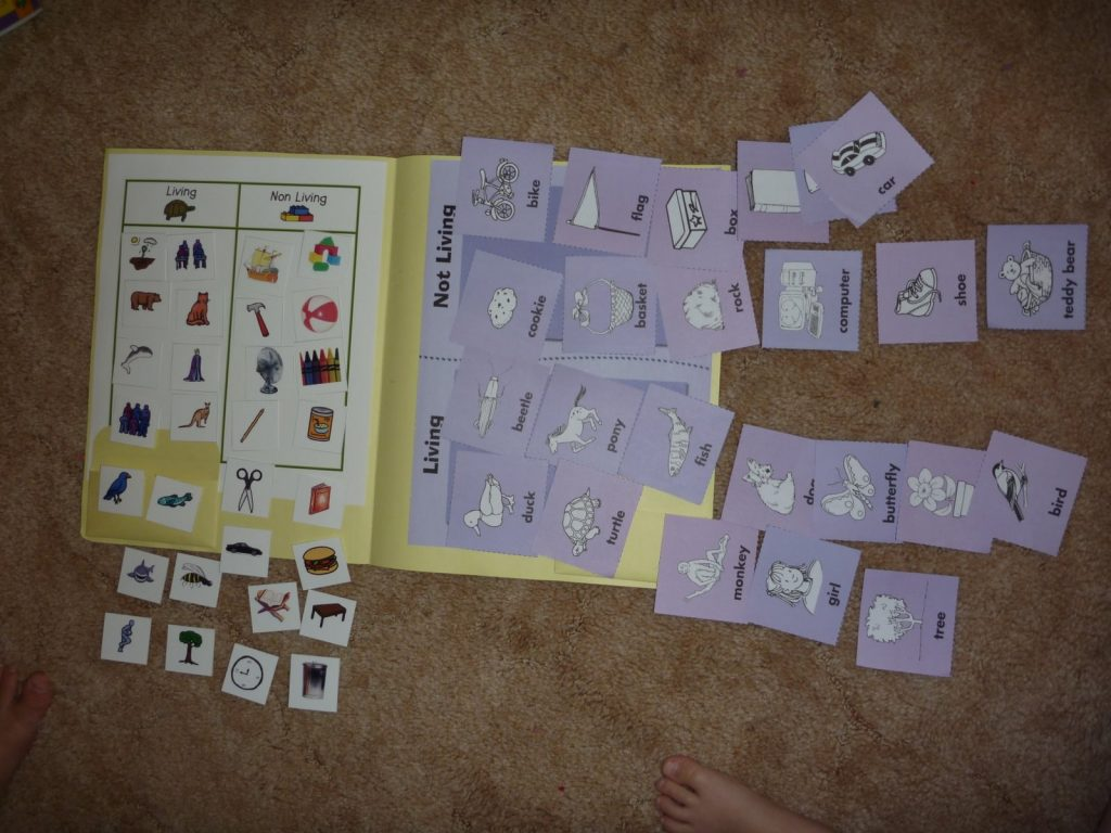 Living And Non Living Sorting Activities