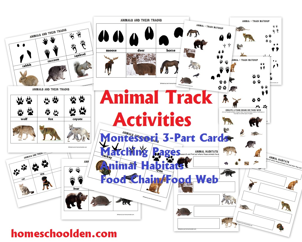 Free Animal Habitat Worksheet