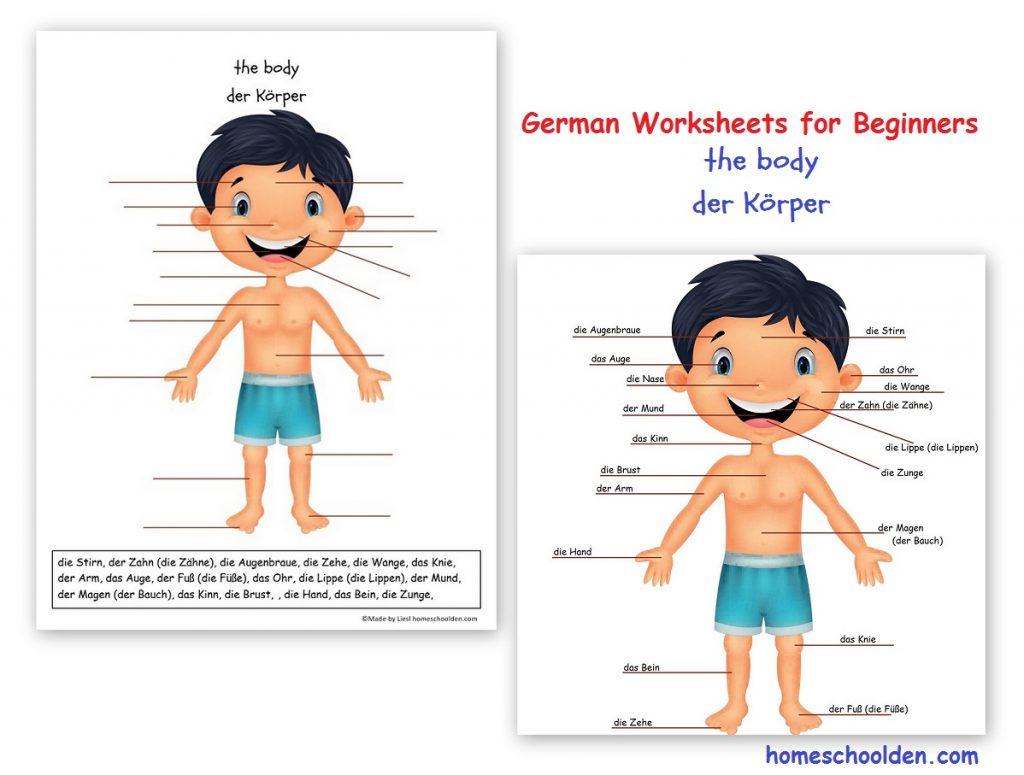 Free German Worksheets For Beginners