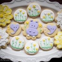 Marta's Baby Shower Cookies