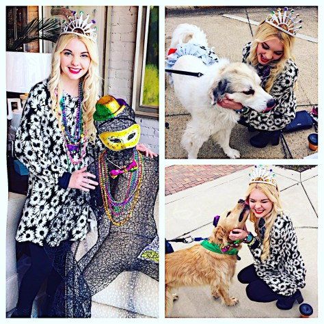 Mardi Gras dogs