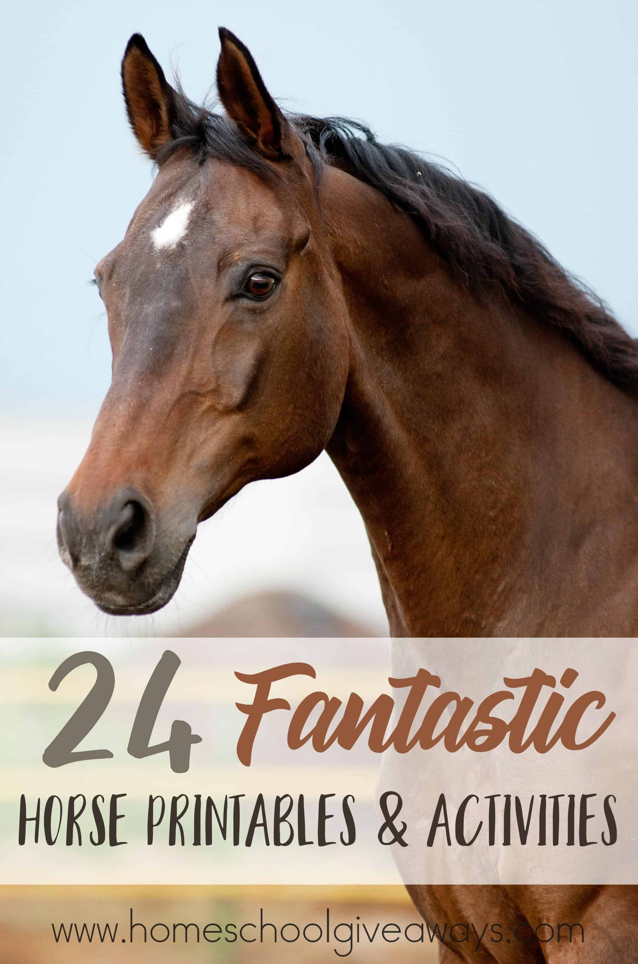 24 Fantastic Horse Printables Amp Activities