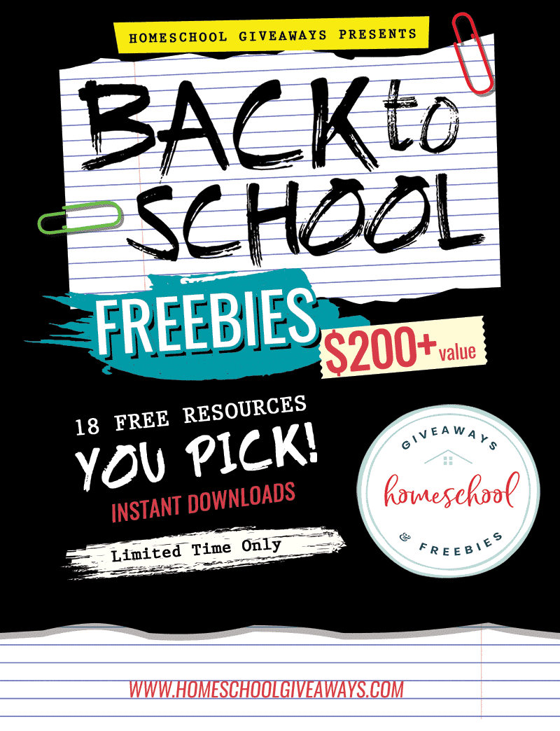 BIG Back to School FREEBIES Bundle - Over $220 Value