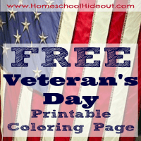Printable Veteran's Day Coloring Page