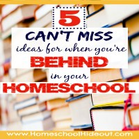 Behind In Your Homeschool?