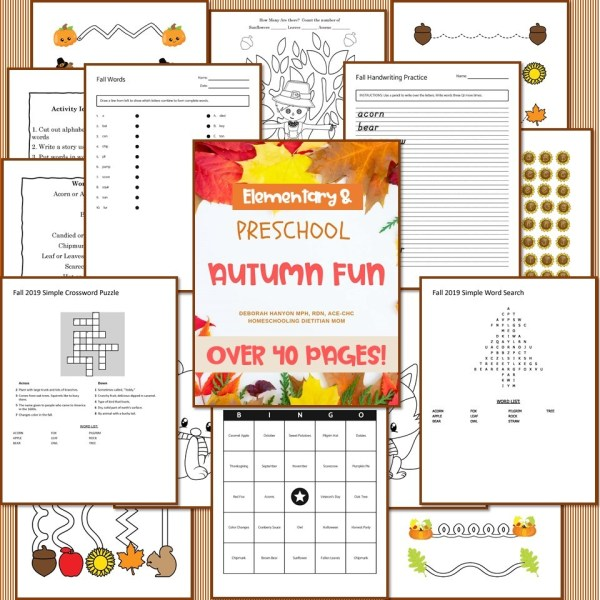 Fall Preschool Elementary Activities