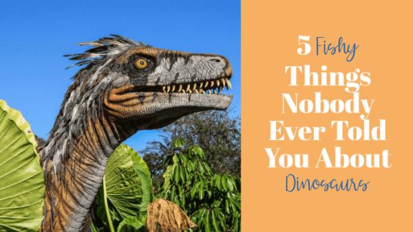Dinosaurs, Dragons, and Birds Bundle