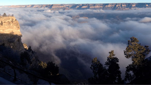 Foggy Canyon
