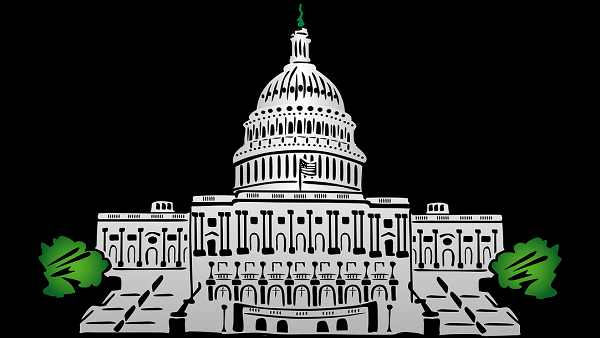 Congress: How It Worked and Why It Doesn't
