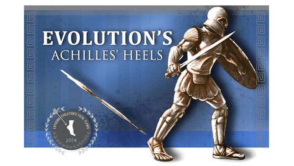 Evolution's Achilles' Heels DVD, Book, Study Guide
