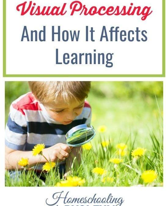 Visual Processing and How it Affects Learning