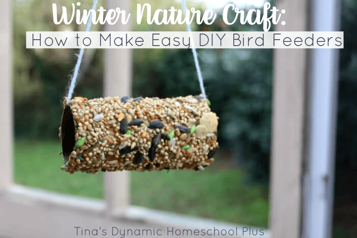 Winter Nature Craft How To Make Easy Diy Bird Feeders