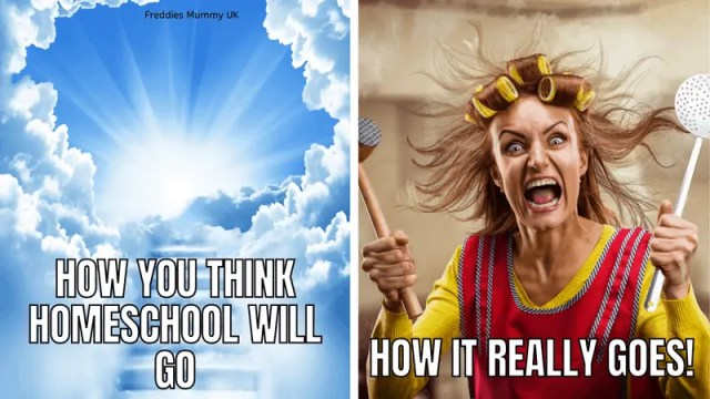 Homeschool Funny Meme