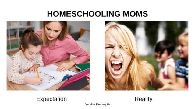 Homeschool Mom Meme