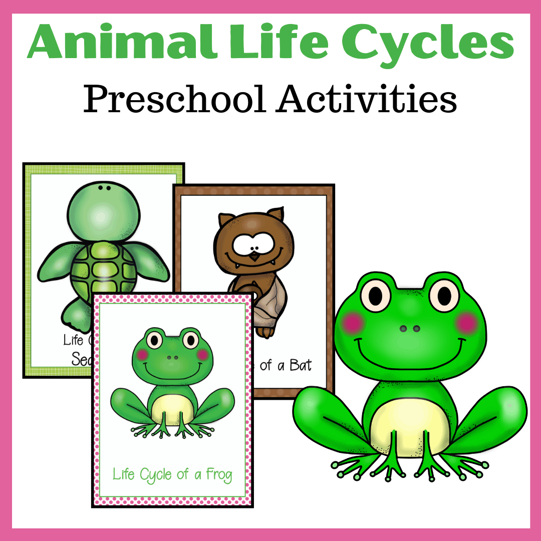 Life Cycle Of Animals Printables For Preschoolers