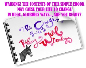 Cowgirls-Guide-to-Riding-Wild-Donkeys